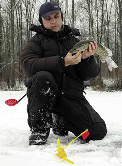Поведение рыбы зимой